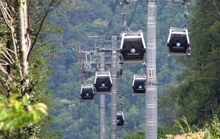 В Геленджике построят подвесную канатную дорогу