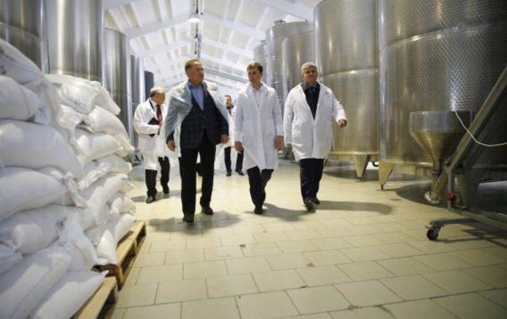 На Кубани начал работать завод по производству сыров