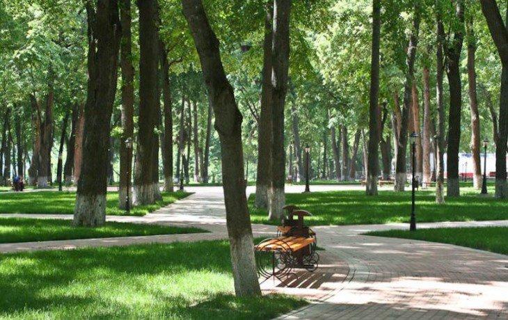 Власти Кубани выделят 80 миллионов рублей для реконструкции Вишняковского парка
