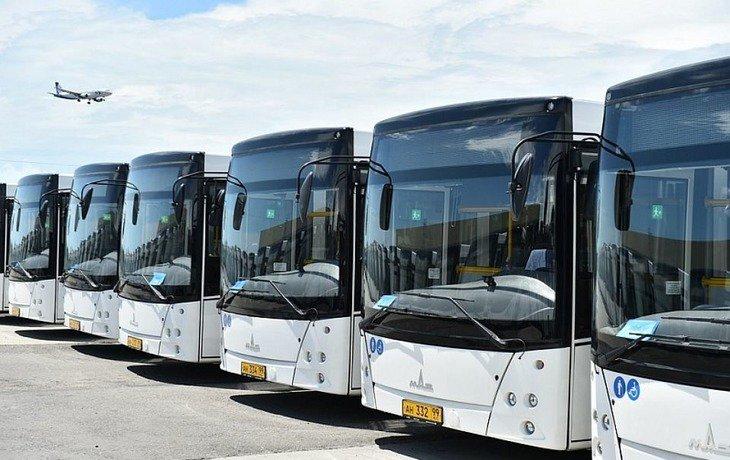 В Сочи во время матчей Кубка Конфедераций будут курсировать 100 дополнительных автобусов